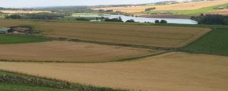 Perkame žemės ūkio paskirties žemę